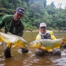Kembara Solo Memburu Dorado Emas Bolivia