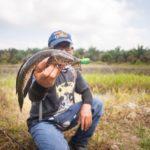 Jalan-Jalan Cari Kawan & Ikan