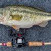 Perhatikan Lokasi Cangkukan Mata pada Mulut Ikan