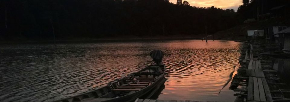 Ikan Panjang Umur Di Tasik Cheow Lan